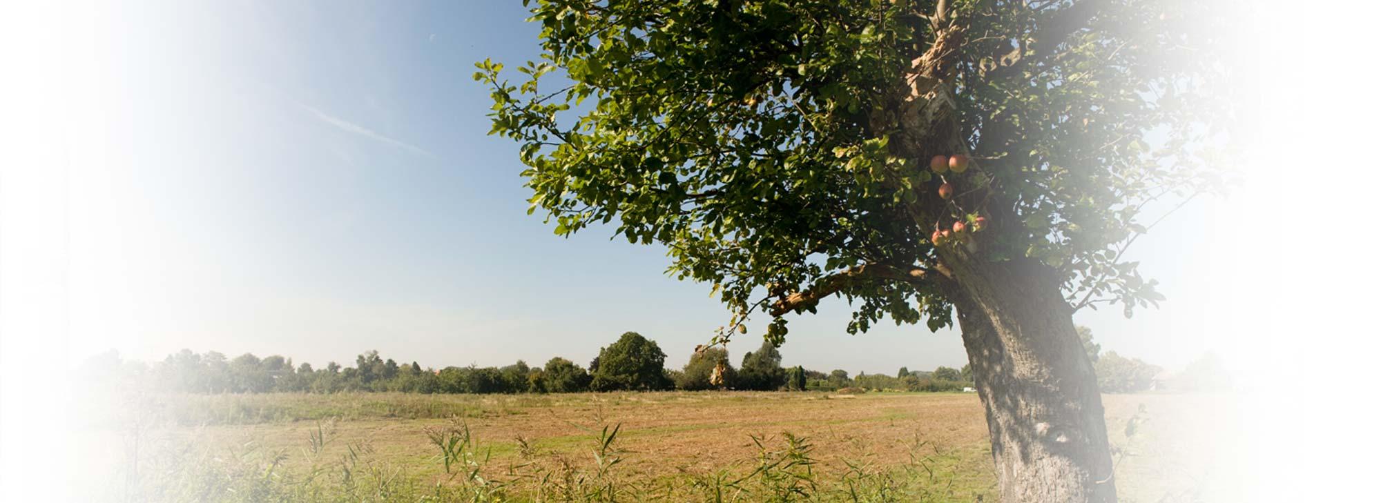 slider-landgoed-appelboom