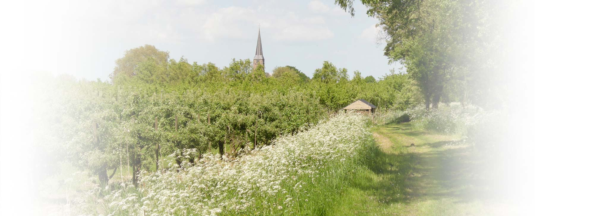 slider-landgoed-natuur-kerk